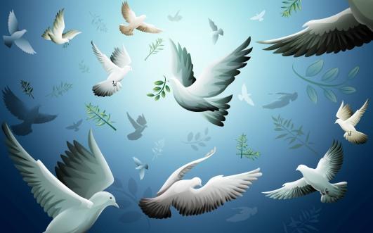 Doves-doves-32938431-1920-1200